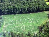 13. Have someone spell out the question in a field and take a fun plane ride to pop the question.